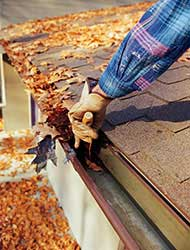 Winterize-Your-Home-and-Keep-Pests-Out